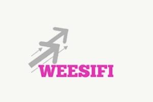 Weesifi cabinet de conseil en performance marketing et commercial